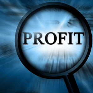 линза показывающая слово profit