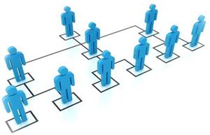 маркетинговая сеть млм и ее ветви