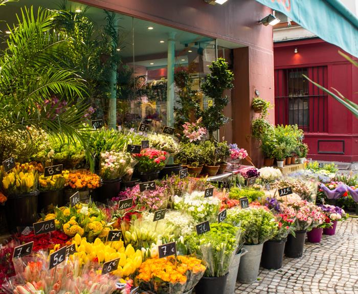 Широкий ассортимент цветов от поставщиков