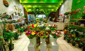 торговый зал цветочного помещения
