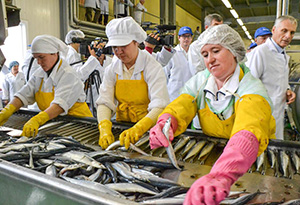 Работники рыбного цеха