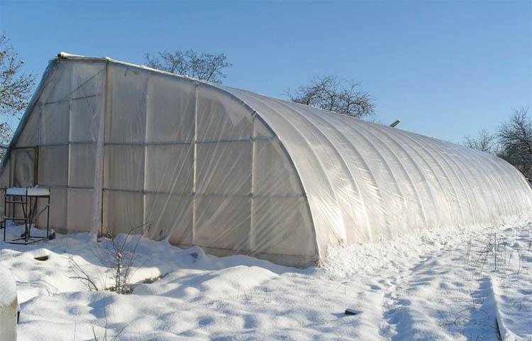 Тепличный бизнес зимой